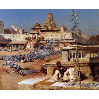 Feeding The Sacred Pigeons, Jaipur