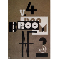 Cover of Broom