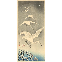 White Birds in Snow
