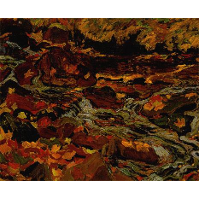 Leaves in the Brook