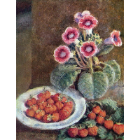 A flower in a pot and strawberries