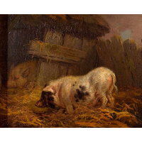 A Chinese Sow