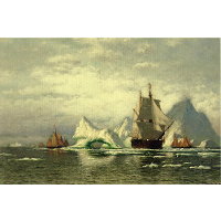 Arctic Whaler Homeward Bound Among the Icebergs