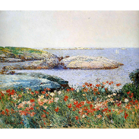 Poppies, Isles of Shoals