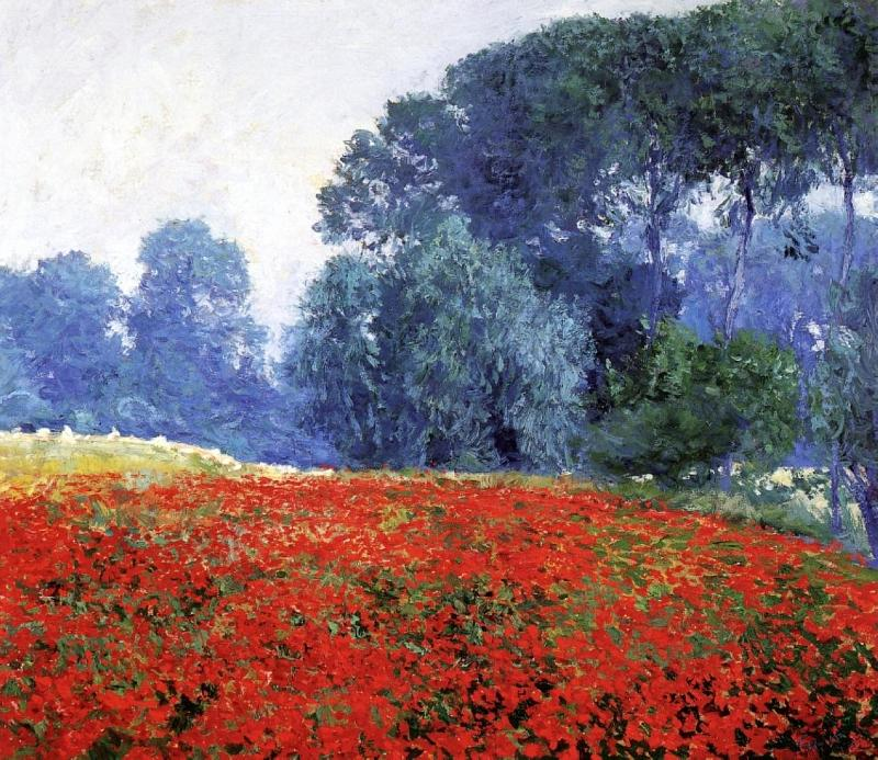 the rise of impressionism Reexamining link between rise of photography and impressionism reexamining link between rise of photography and left to know about impressionism.