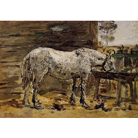 A Horse Drinking
