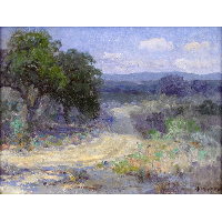 A Path Through the Texas Hill Country