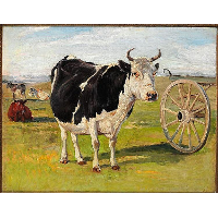 A black-and-white cow