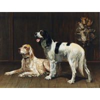 A Pair of Setters