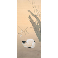 Cat and Plum Blossoms